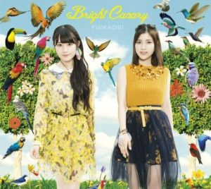 bright-canary